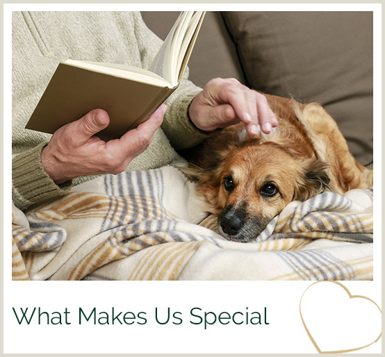 What Makes Us Special