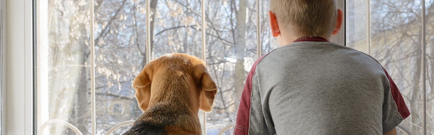 Pet Cremation with ConfidenceTM  Your pet is in safe hands  with our standards of care