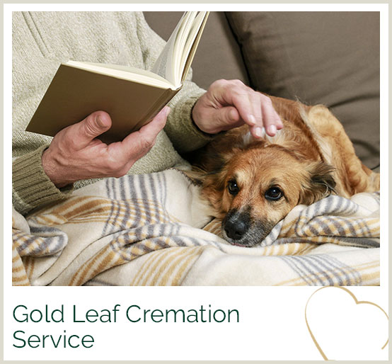 The Pet Crematorium - Pet Cremations in England & Scotland