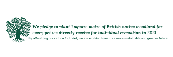 We pledge to plant 1 square metre of British native woodland for every pet we directly receive for individual cremation in 2021